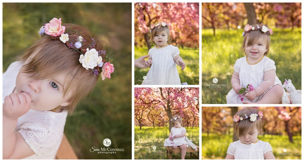 Spring photos of a little girl in front of pretty blossoms in ottawa