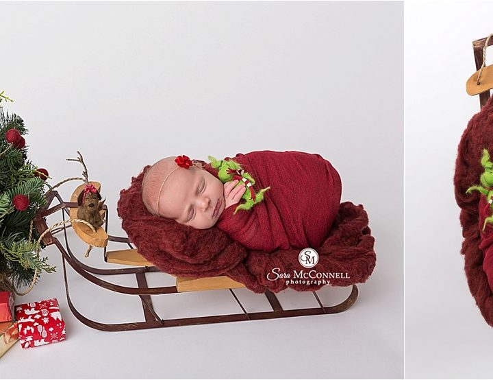 Limited Edition Holiday Petite Newborn Sessions | Ottawa Baby Photographer