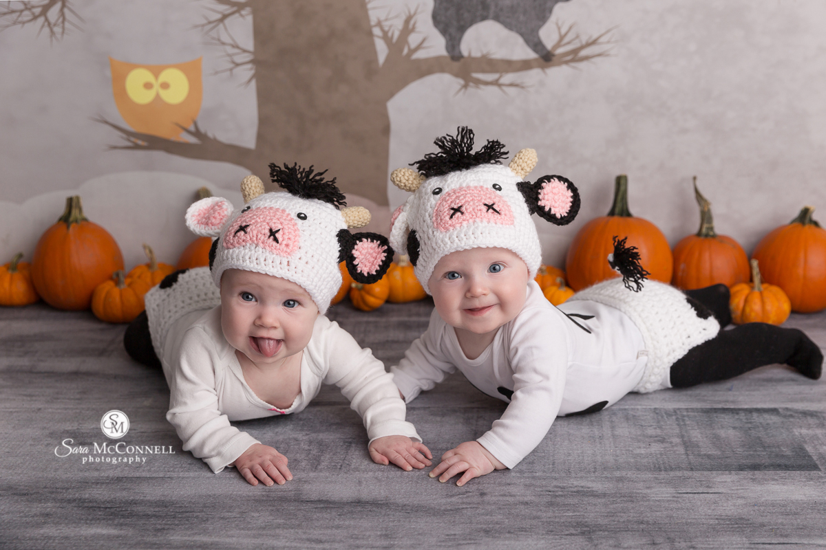 Baby in a cow Halloween costume
