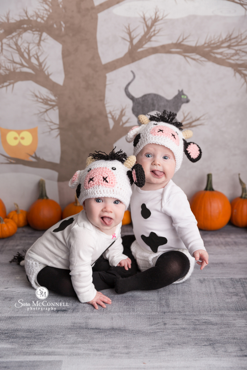 Babies in a cow Halloween costume
