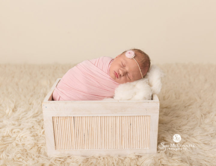 Ottawa Newborn Photos | All wrapped up