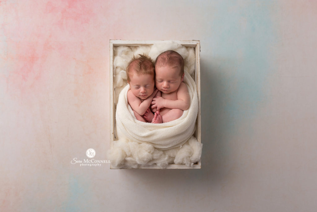 newborns wrapped in a white blanket in a box