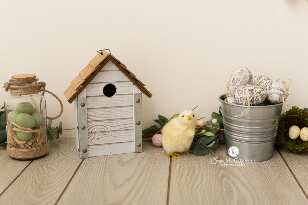bird house and pretend chick for spring photo set