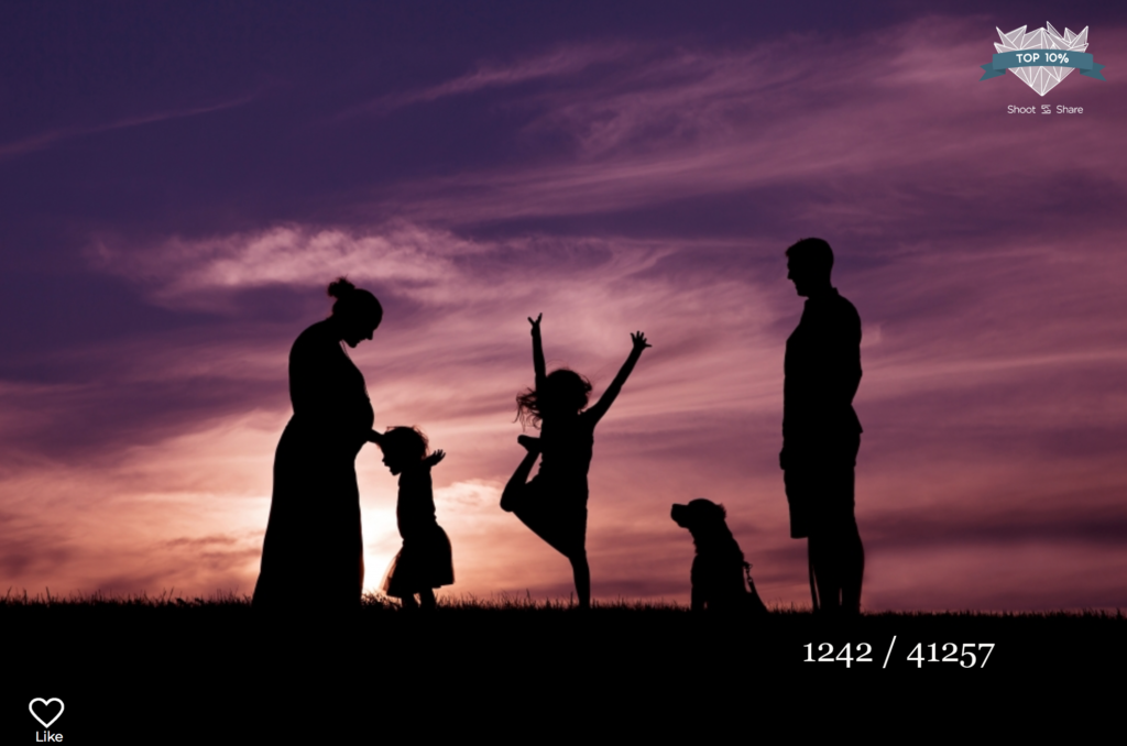 silhouette photos at sunset by sara mcconnell photography