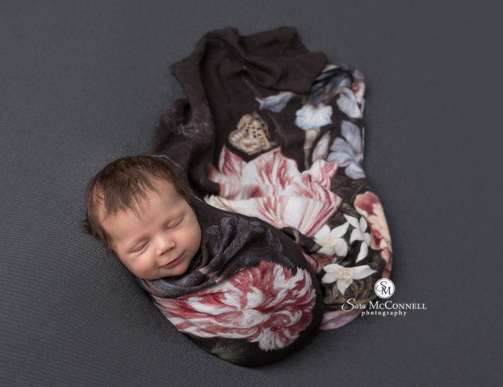 Ottawa Newborn Photographer | All wrapped up