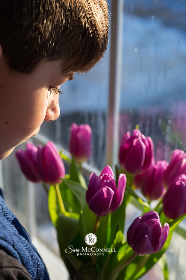 boy sniffing purple tulips