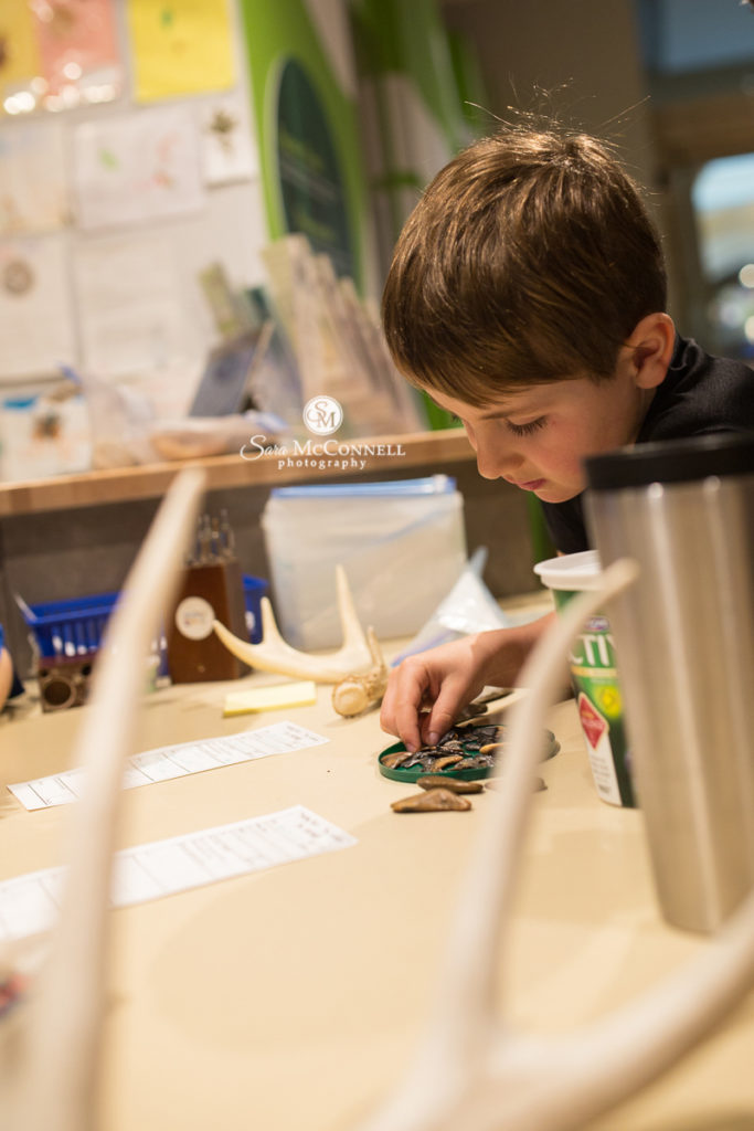 young boy examining items at the museum of nature