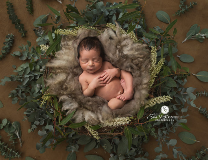 Ottawa Newborn Photographer | A cozy studio