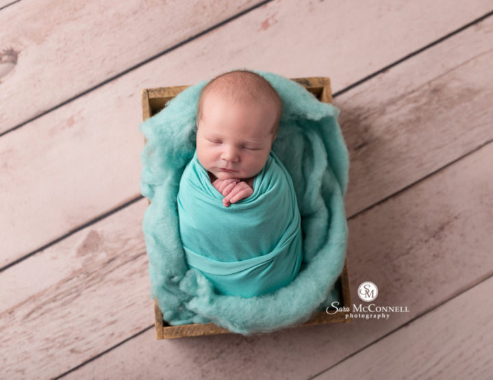 Ottawa Newborn Photographer | Blues