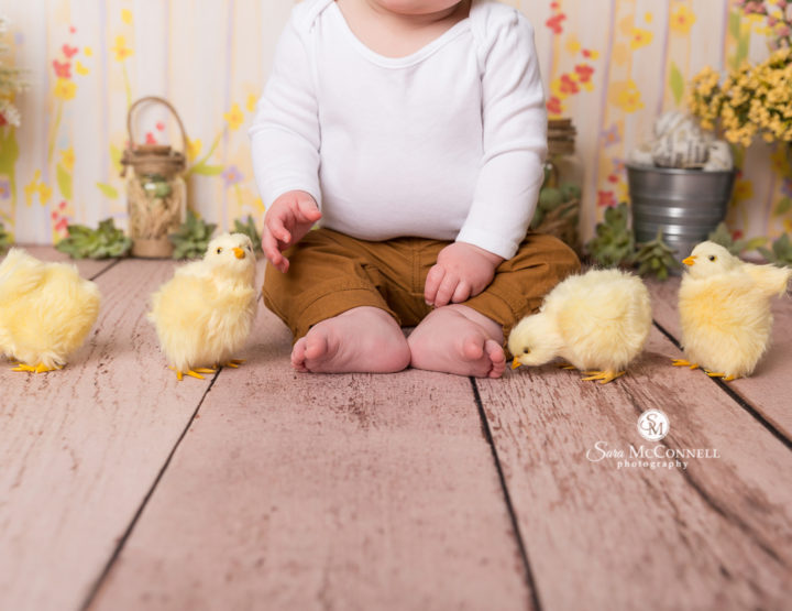 Photographing Springtime Babies in the Studio