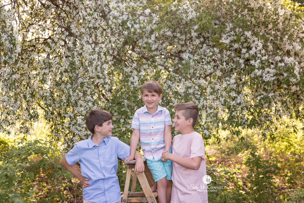 three brothers in front of blossoming tree