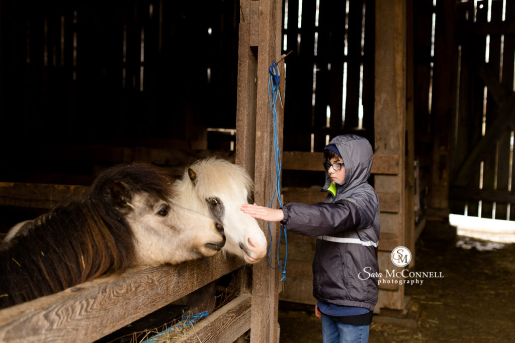 boy petting ponies at parc omega