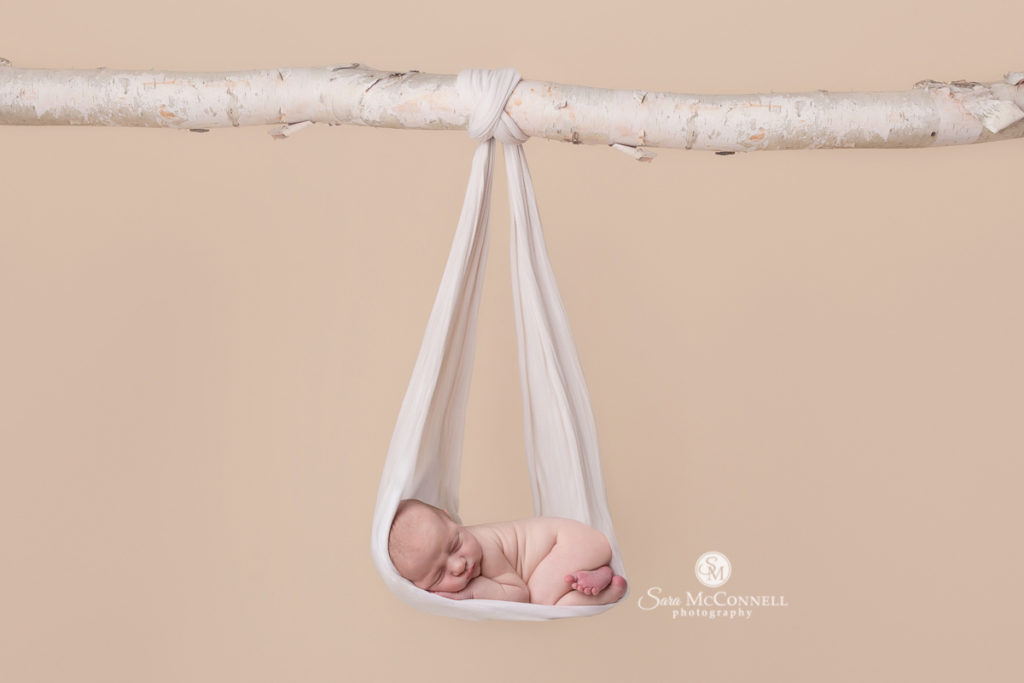 baby sleeping in a blanket in a tree photogshop
