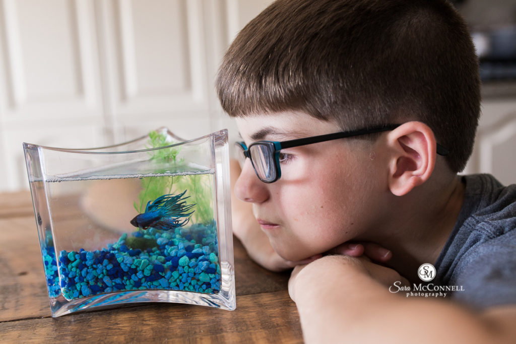 boy looking at fish in a fish bowl with blue stones