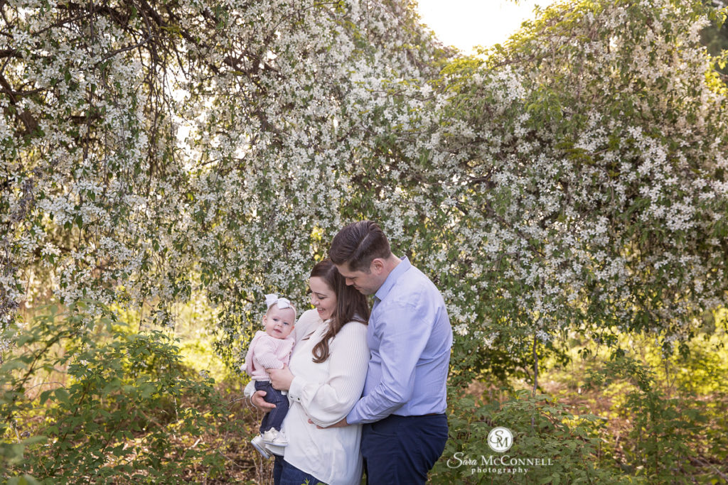 parents holding baby in front of blooming tree -  sara mcconnell photography sale