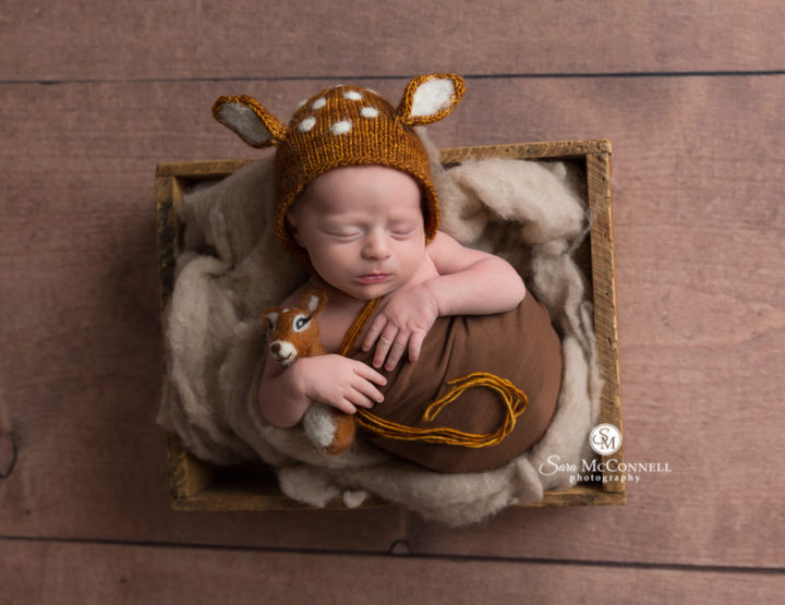 Ottawa Newborn Photos | Oh, Deer