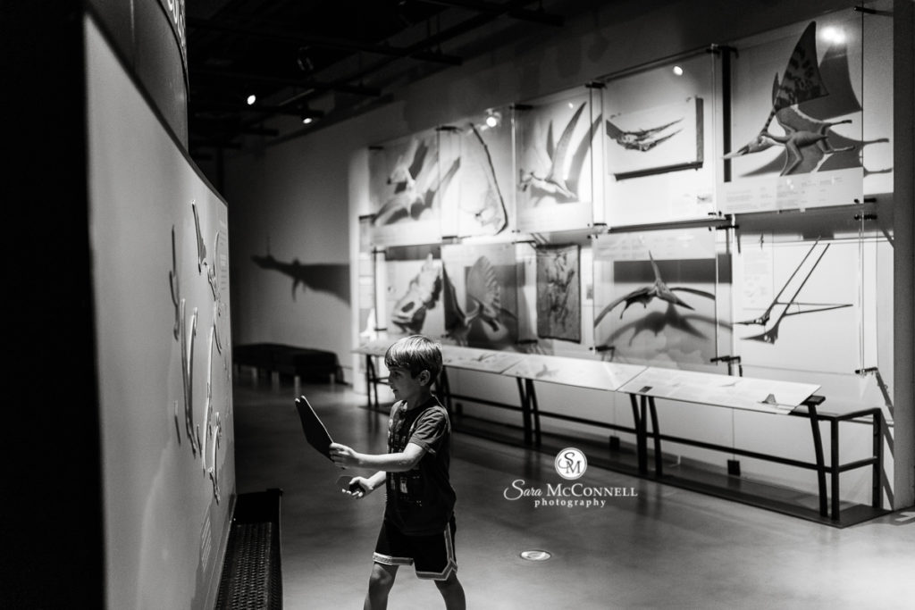 boy at the museum of nature