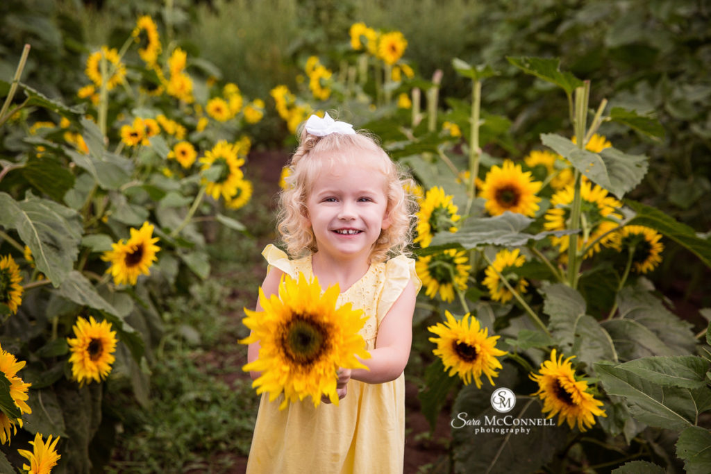 girl in front of a field of sunflowers -  sara mcconnell photography sale