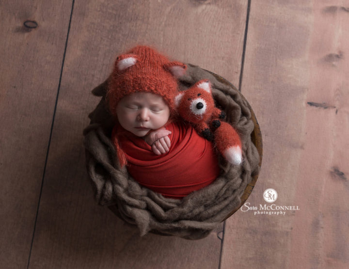 Ottawa Newborn Photographer | The little fox