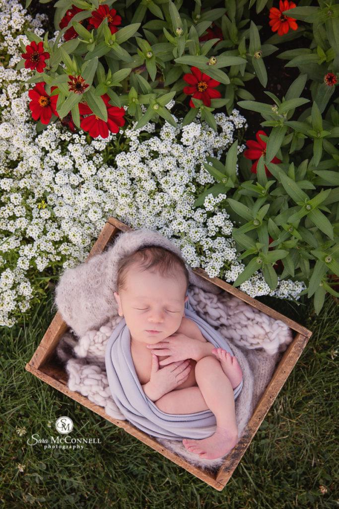 flowers surround a sleeping newborn baby in a wooden basket