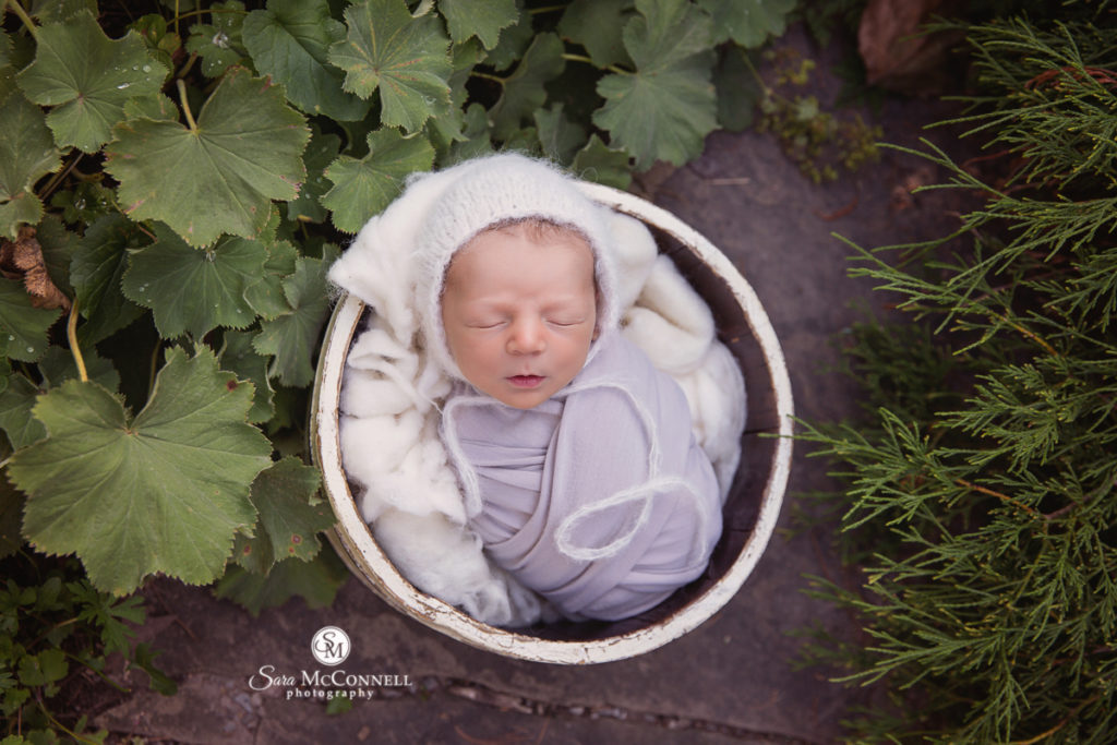 sleeping baby in a garden