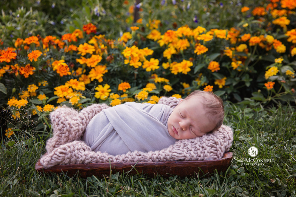 newborn baby wrapped in lilac and sleeping in a garden