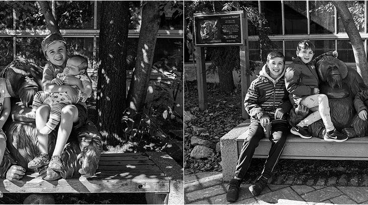 A new photo tradition | Ottawa Photographer
