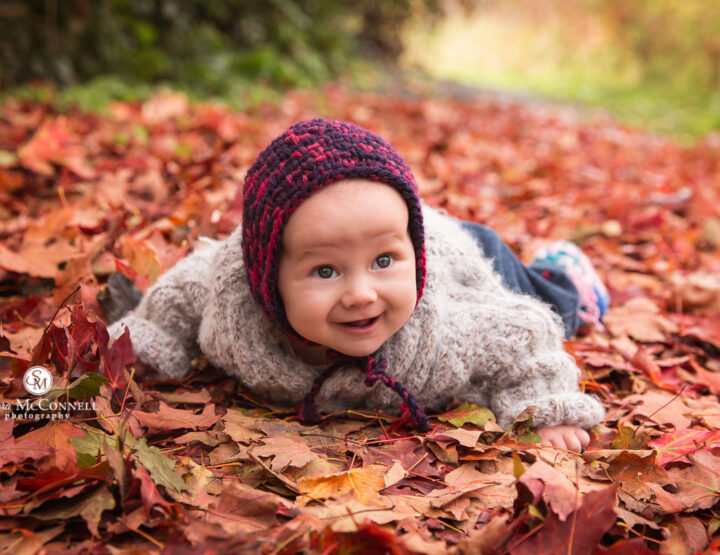 The glorious colours of Fall!   Photography Tips