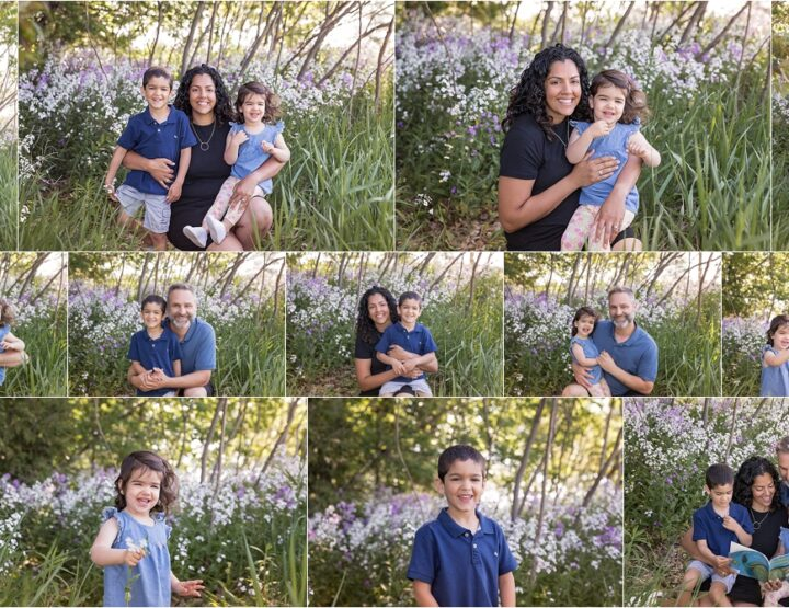 Ottawa Family Photo Session | Wildflowers