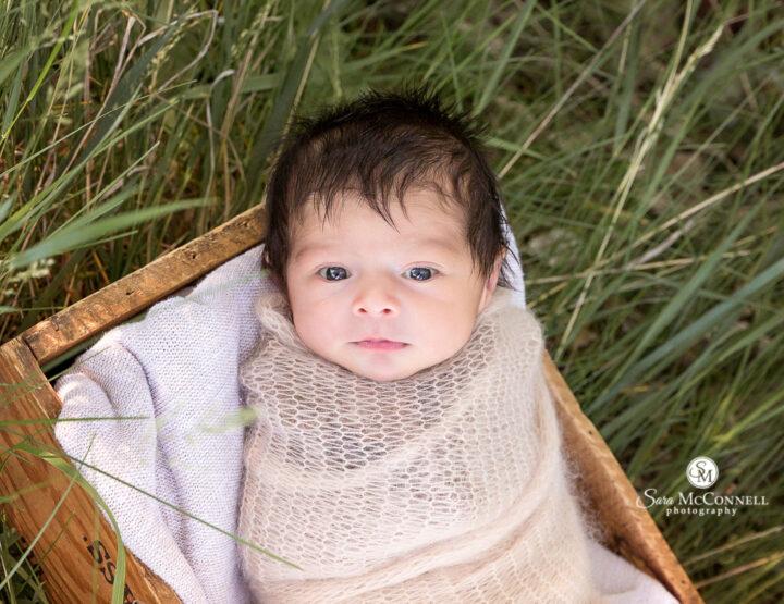 Summer Newborn Photos   Ottawa Photographer