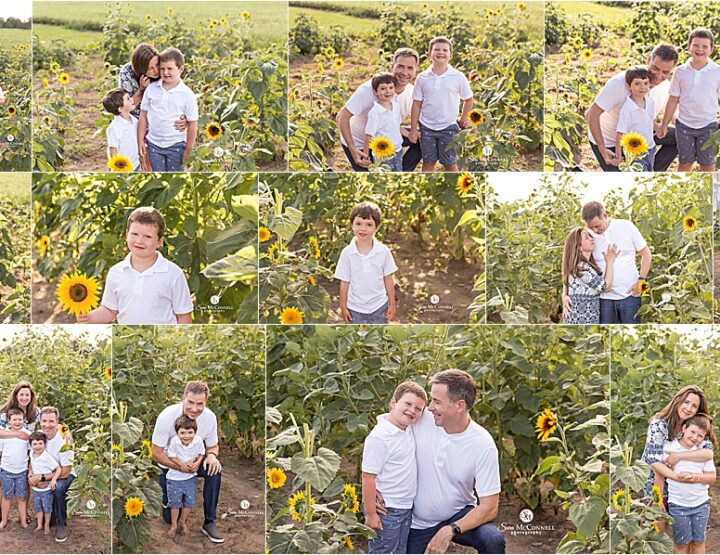 Sunflower Sessions | Ottawa Photographer