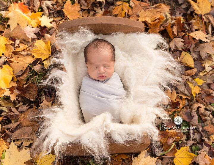 Inside and Outside: Ottawa Newborn Photographer