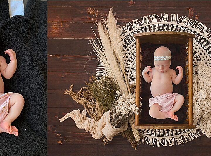 Digital Art | Virtual Newborn Photos