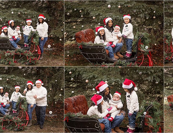Christmas Photos With A Sleigh | Ottawa Photographer