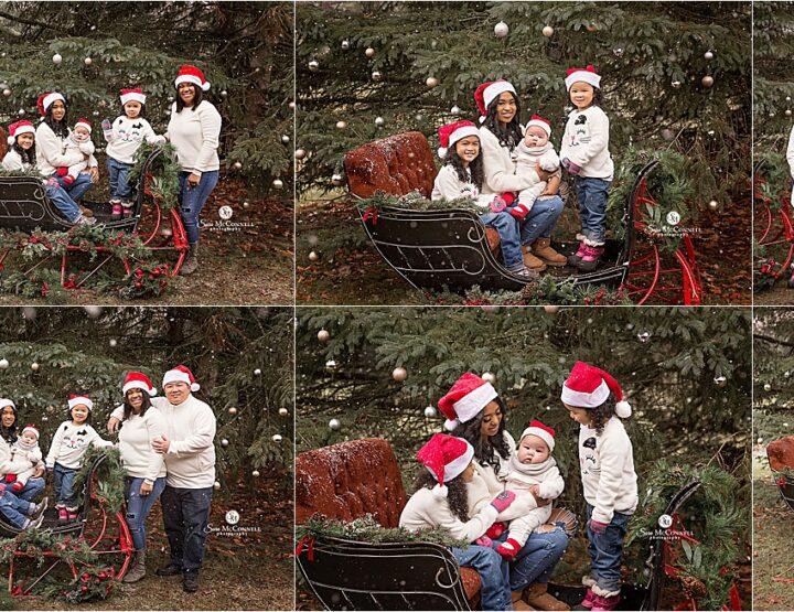 Christmas Photos With A Sleigh | Ottawa Photographer