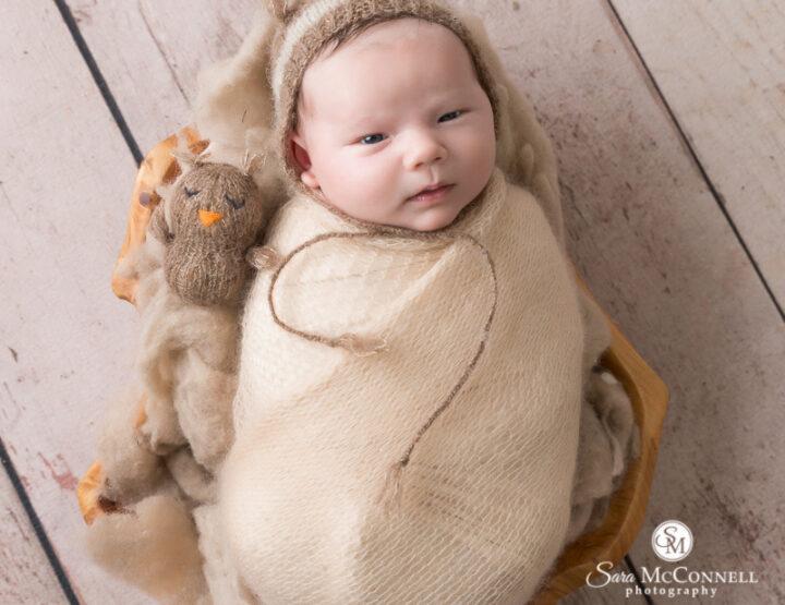 Woodland Friends | Ottawa Newborn Photos