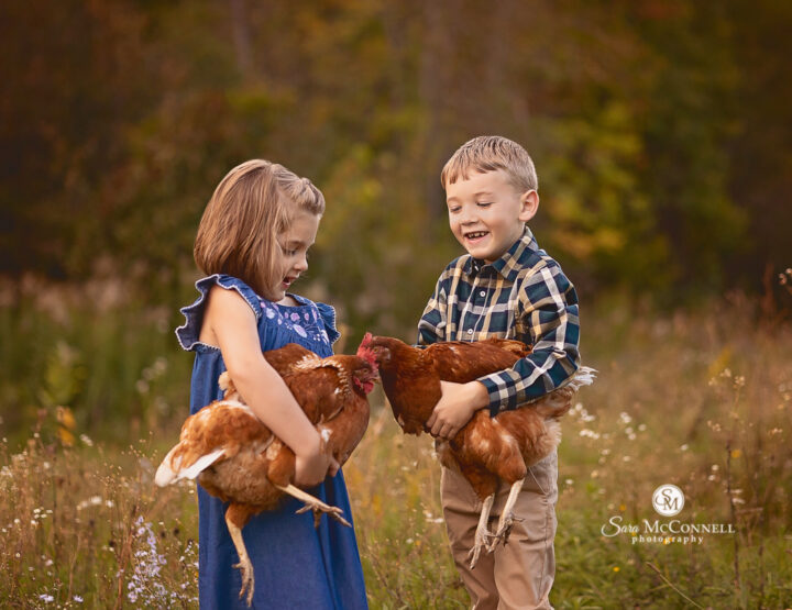 Feathered Friends | Almonte Photographer
