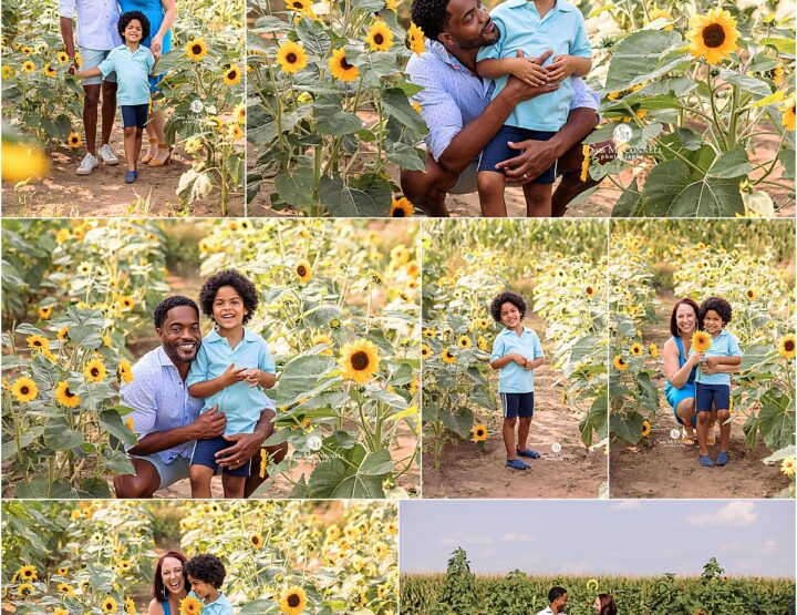 Summer with the Sunflowers | Barrhaven Family Photographer