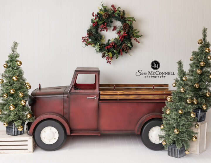 2021 Holiday Sessions | Three Session Options