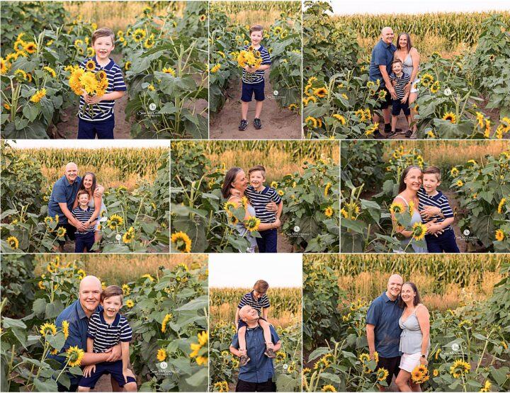 August Sunflower Sessions | Orleans Photographer