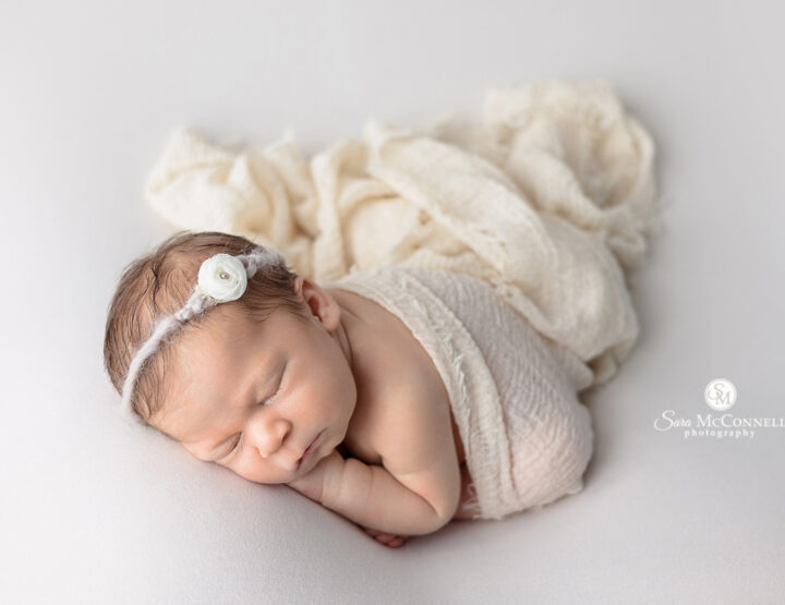 Perfectly Posed   Orleans Newborn Photographer